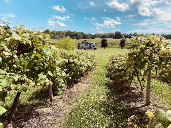 AOL - Harvest Hosts South Shore Wine Company